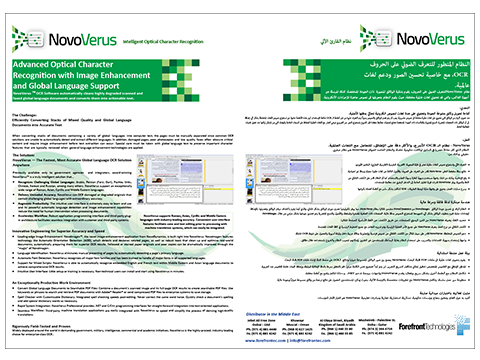 Brochures, Graphic Design, Illustrate, Print Design